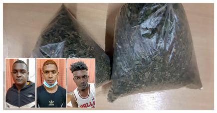 Les suspects ont été arrêtés après avoir tenté de revendre du gandia à la police.