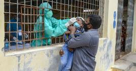 Les autorités indiennes, notamment le ministère de la Santé publique, ont recommandé à chaque État de suivre les consignes de l'Organisation mondiale de  la santé, que ce soit en termes de dépistage ou de recensement des victimes.