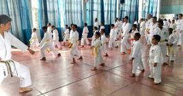 Les adeptes du shotokan ont pleinement profité du passage de l'expert japonais.