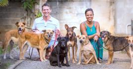 Mathias et Sheila Rendors ont recueilli six chiens L'un d'entre eux (au centre) est handicapé.