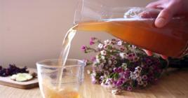 Le kombucha est une boisson à base de thé vert ou noir fermenté, qui contient du sucre ou du miel, des levures, du jus de raisin et des bactéries.