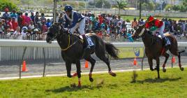 Palace Chapel demeure le cheval à suivre dans l'épreuve phare, surtout avec le bénéfice de sa 1re ligne.