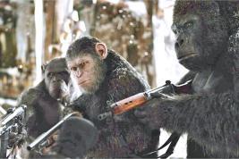 Flèches, fusils, bagarres, bref, c'est la guerre !