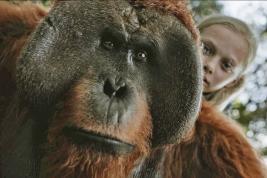 Des primates et des hommes qui vont se  bagarrer pour une dernière fois : personne n'en sortira indemne, même pas vous !