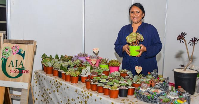 La jeune femme fait venir des succulents de plusieurs endroits du monde…